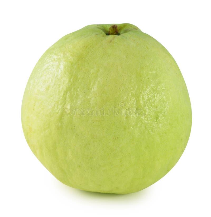 Fruta de guayaba en el fondo blanco fotos de archivo libres de regalías
