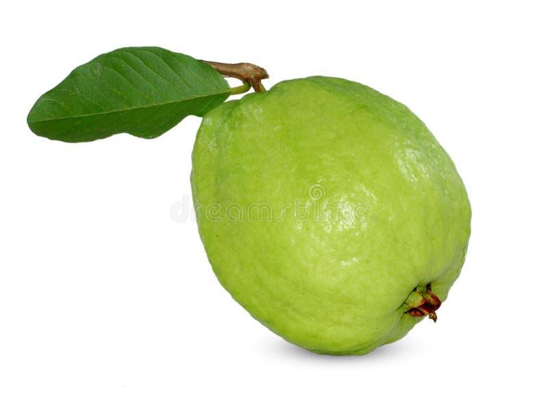 Fruta de guayaba fresca aislada en el fondo blanco fotografía de archivo