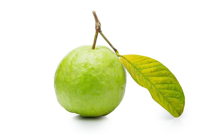 Fruta de guayaba verde con la hoja aislada en el fondo blanco El fichero contiene un camino de recortes imágenes de archivo libres de regalías