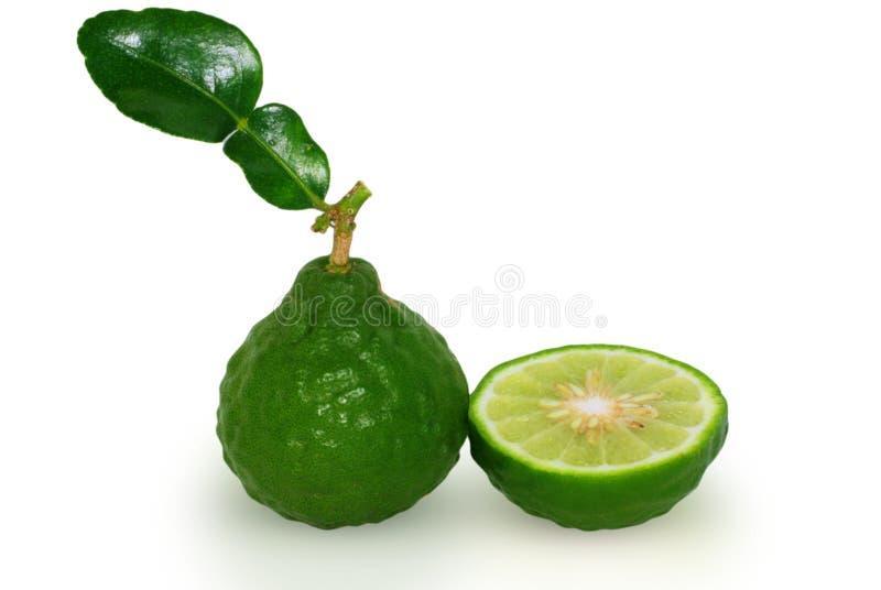 Fruta de la bergamota, cal del cafre aislada en blanco fotografía de archivo