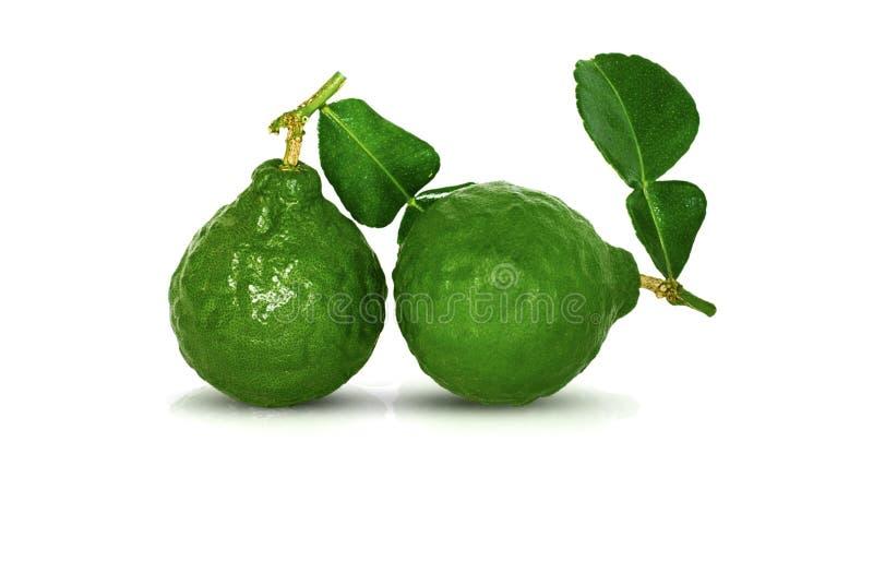 Fruta de la bergamota, cal del cafre aislada en blanco fotos de archivo