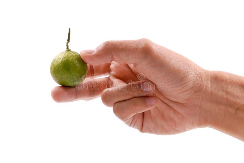 Fruta de la cal de la explotación agrícola de la mano foto de archivo