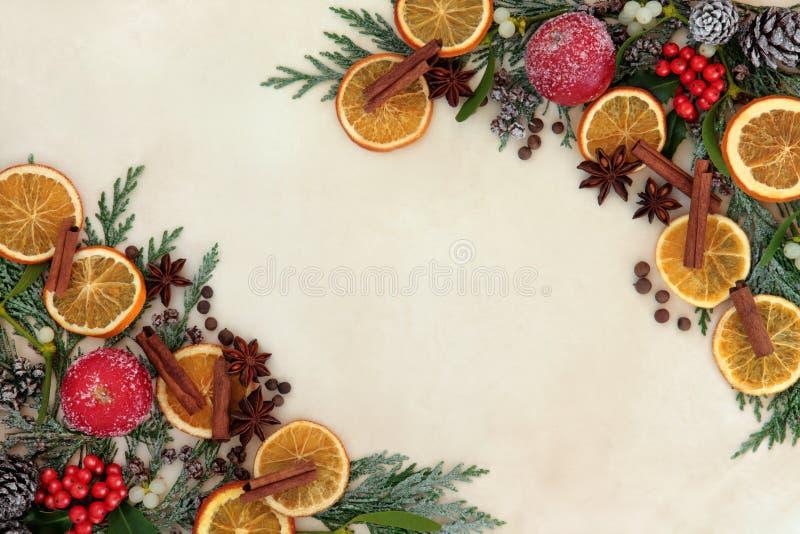 Fruta de la especia de la Navidad y frontera floral imagenes de archivo