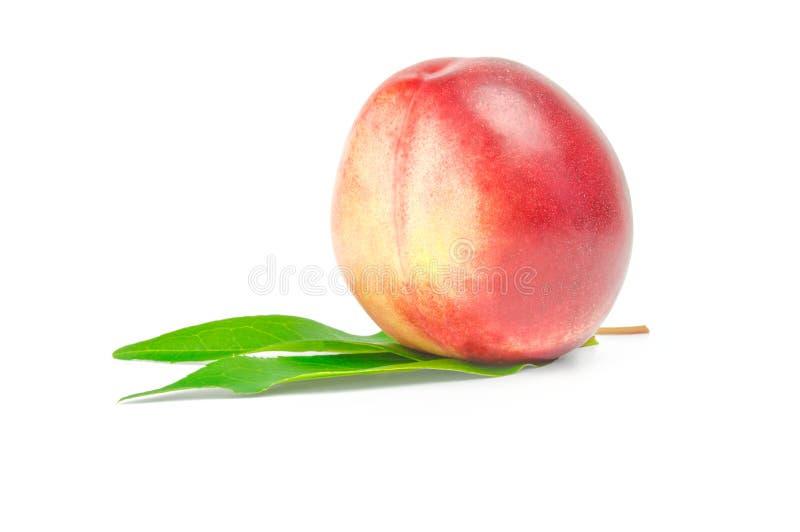 Fruta de la nectarina aislada en el recorte blanco del fondo imagen de archivo libre de regalías