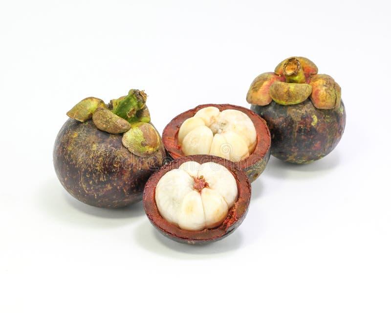 Fruta de la púrpura de Mangostieen foto de archivo libre de regalías