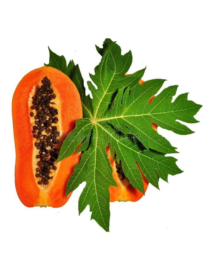 Fruta de la papaya aislada en el fondo blanco imágenes de archivo libres de regalías