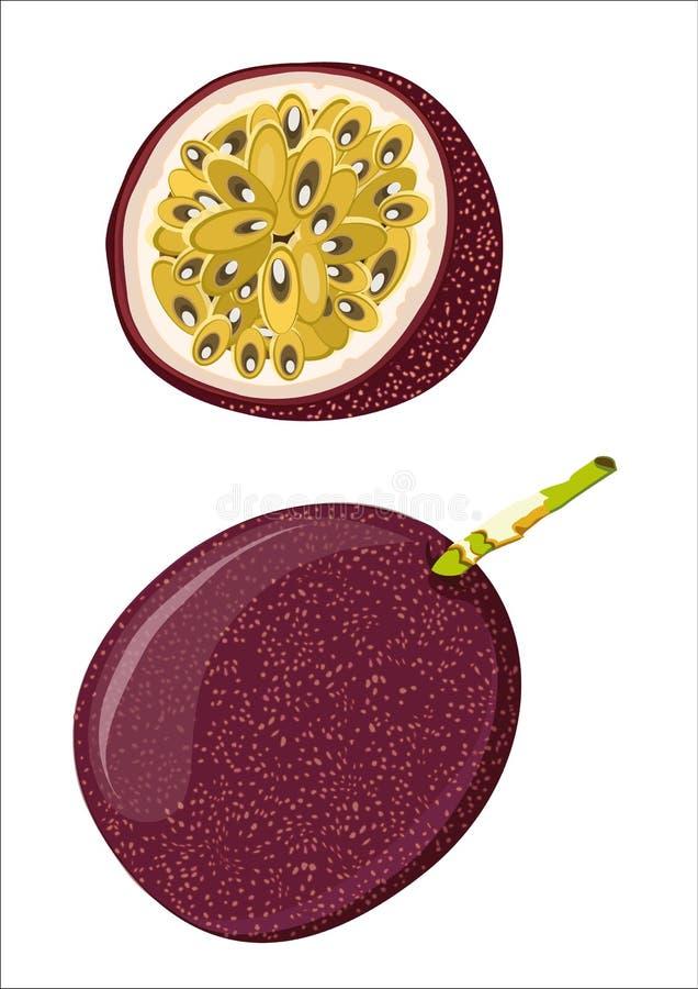 Fruta de la pasión libre illustration