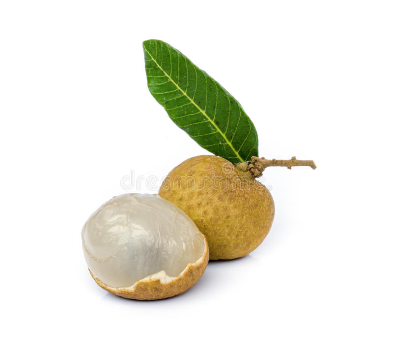 Fruta de Longan imagem de stock