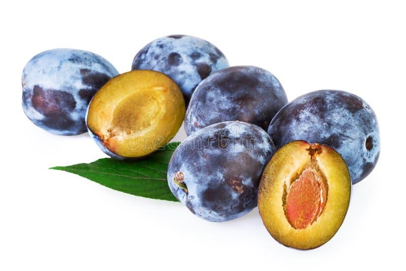 Fruta de los ciruelos foto de archivo libre de regalías