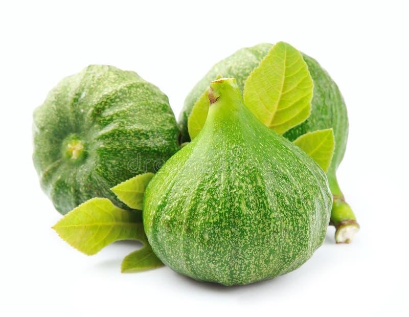 Fruta de los higos imagen de archivo libre de regalías
