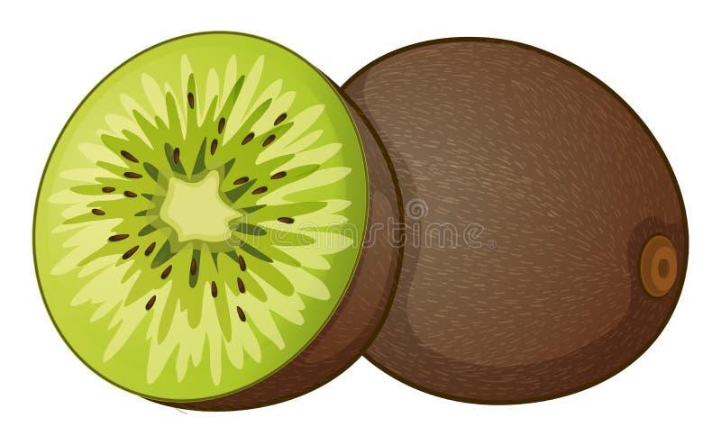 Fruta de quivi ilustração do vetor