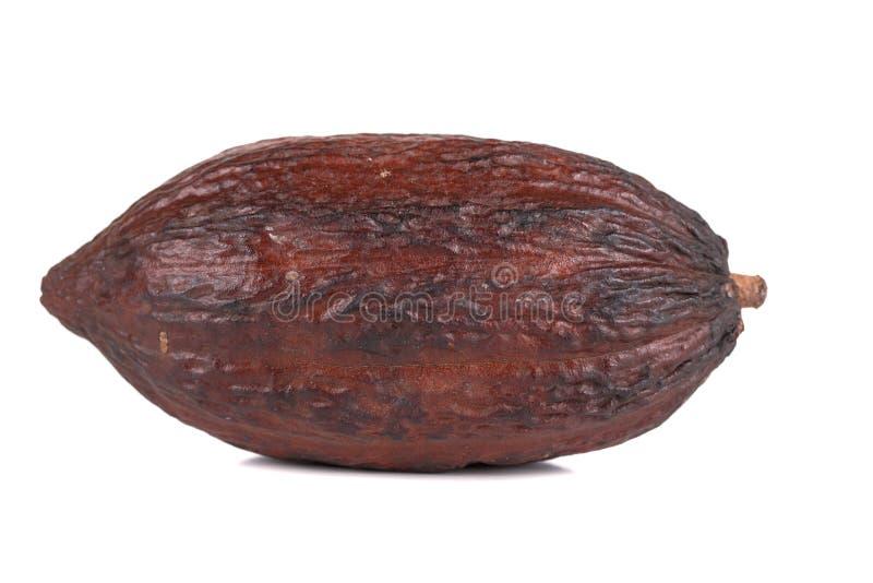 Fruta del cacao foto de archivo libre de regalías