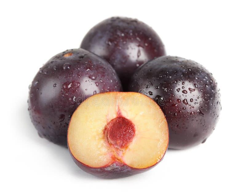 Fruta del ciruelo con rocío fotos de archivo
