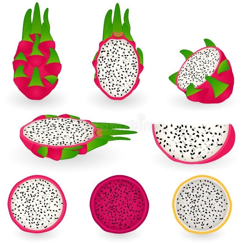 Fruta del dragón ilustración del vector
