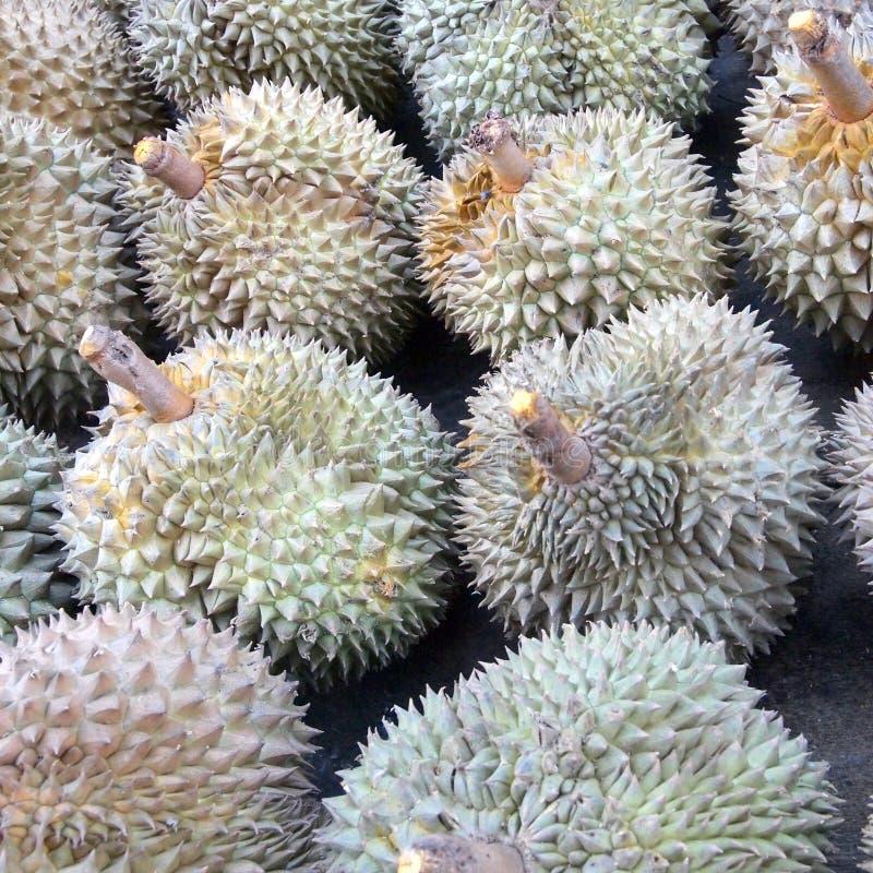 Fruta del Durian del rey fotografía de archivo