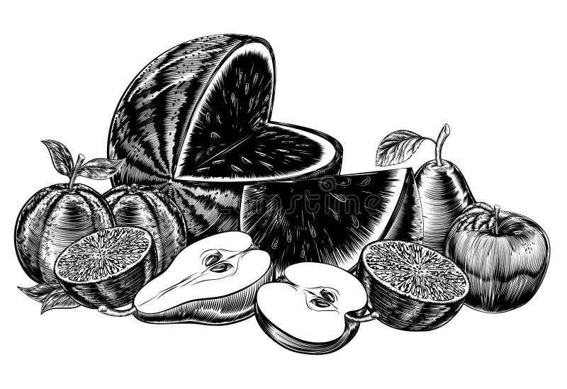 Fruta del grabar en madera del vintage stock de ilustración