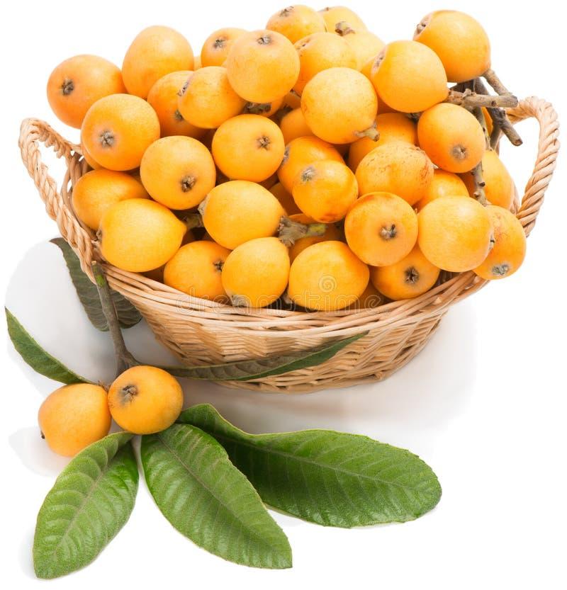 Fruta del Loquat imagen de archivo libre de regalías