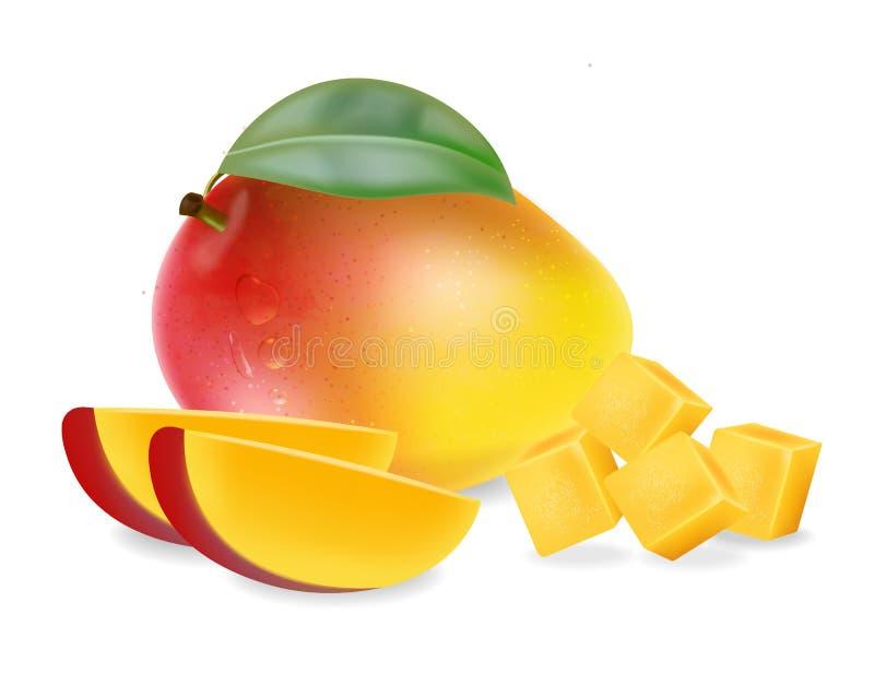 Fruta del mango y vector aislado rebanadas realistas Los elementos detallados diseñan ejemplos 3D ilustración del vector
