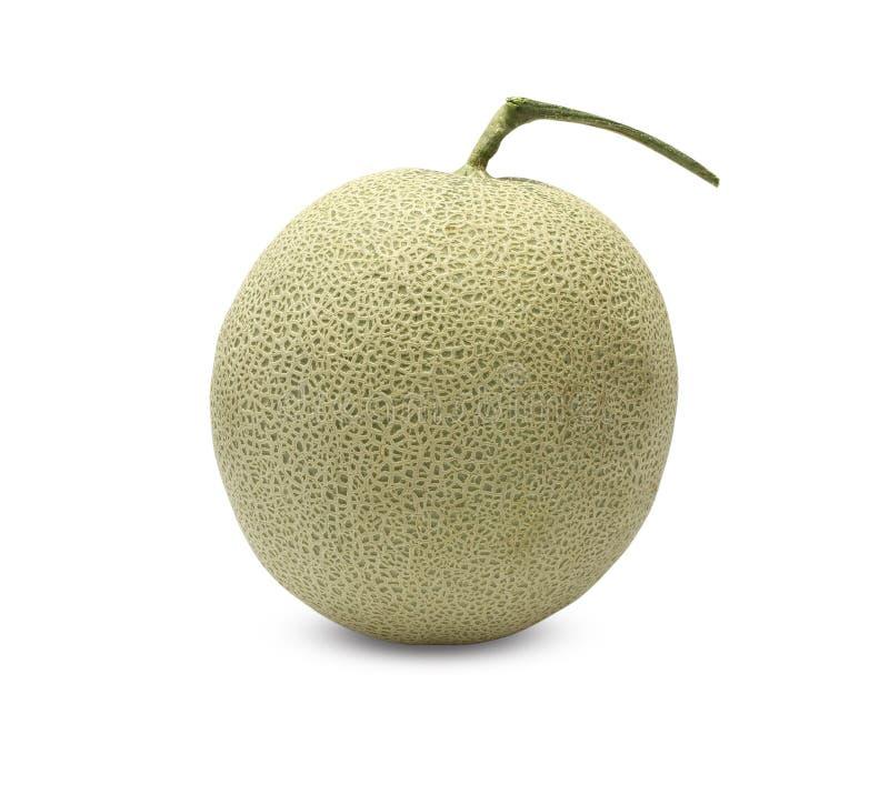 Fruta del melón de la roca en el fondo blanco fotos de archivo