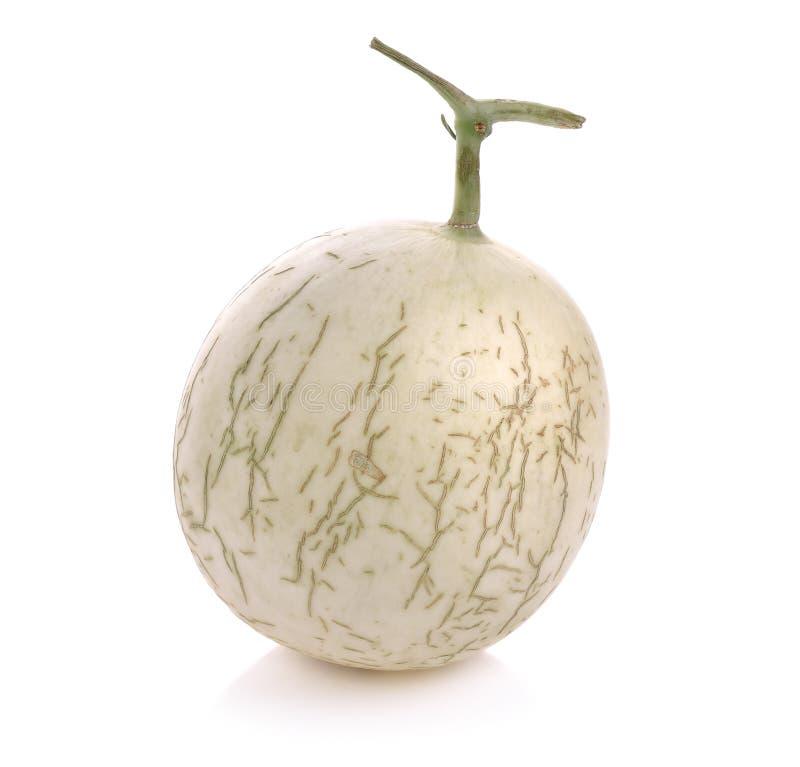 Fruta del melón del cantalupo en el fondo blanco imagen de archivo