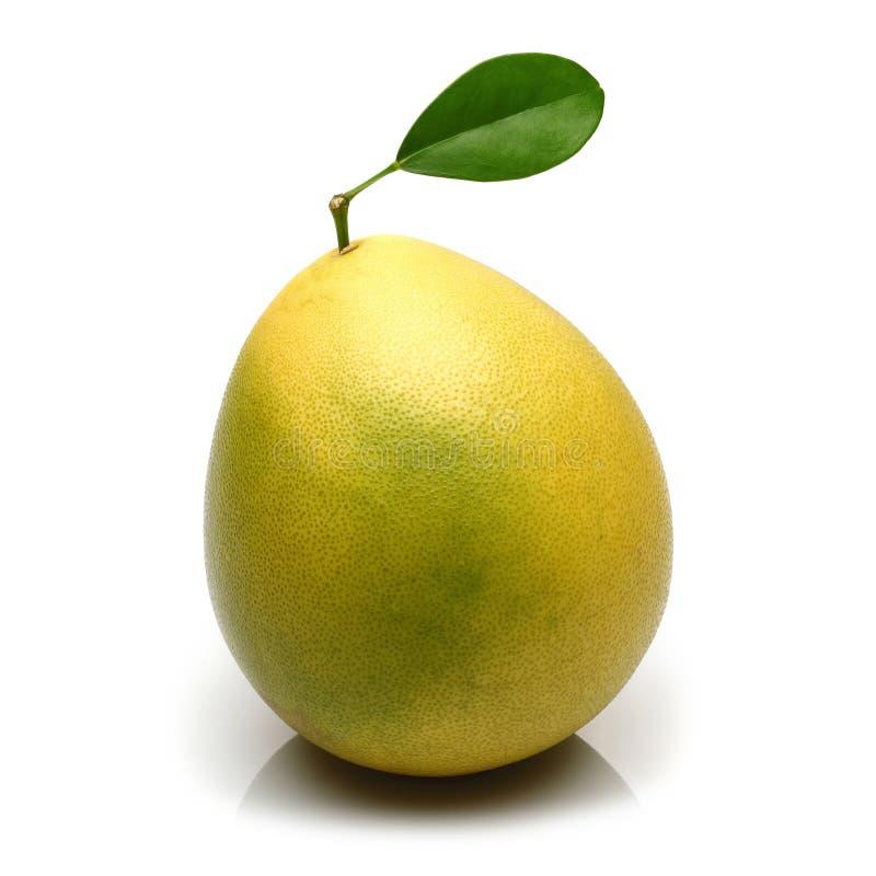 Fruta del pomelo con la hoja en el fondo blanco imágenes de archivo libres de regalías