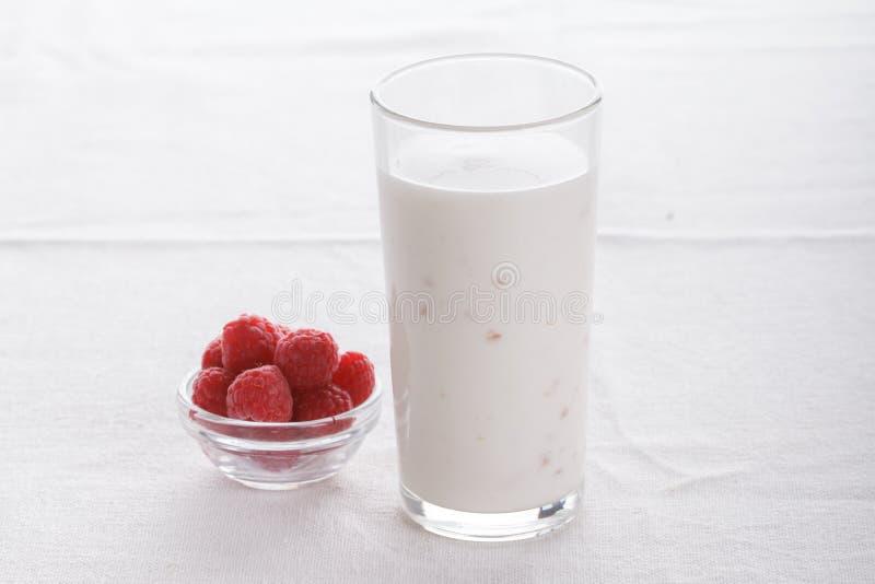 Fruta deliciosa, yogur griego y postres helados del granola en el fondo blanco imagen de archivo libre de regalías