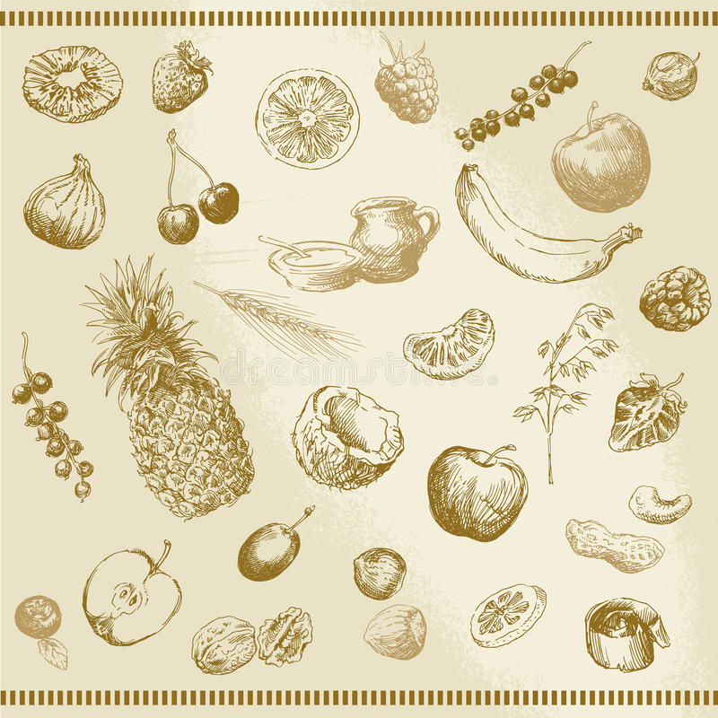 Fruta dibujada mano stock de ilustración