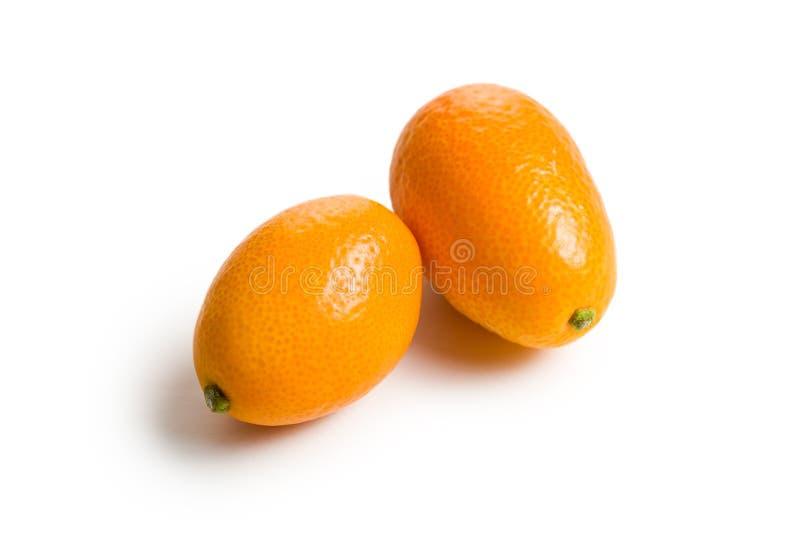 Fruta do Kumquat imagem de stock
