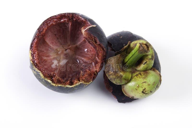 Download Fruta Do Mangustão Do Escudo Foto de Stock - Imagem de fruta, nutritious: 26504424