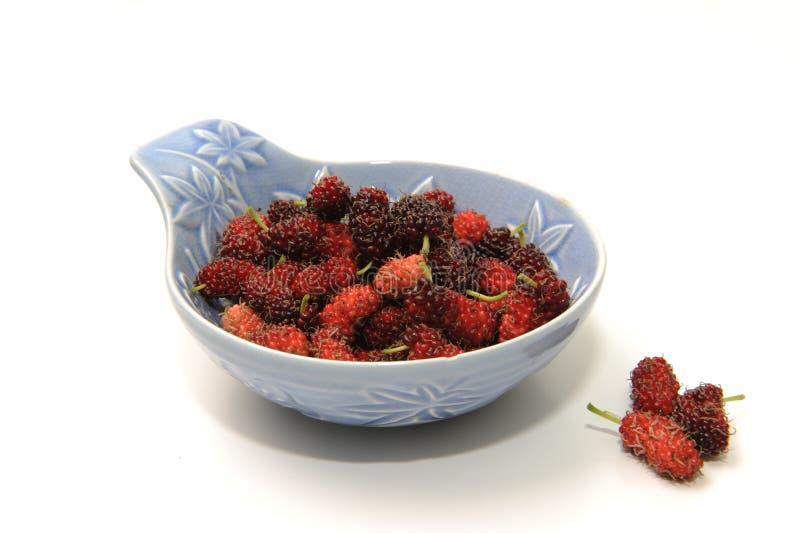Fruta do Mulberry imagem de stock