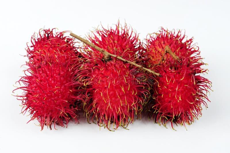 Fruta do Rambutan foto de stock royalty free