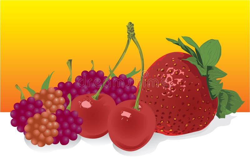 Fruta do vetor ilustração stock