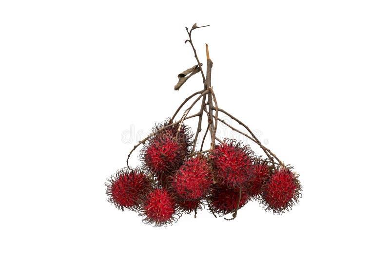 Fruta dulce del rambutan fresco en el fondo blanco foto de archivo