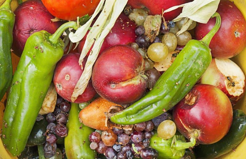 Fruta e verdura podre em uma bacia foto de stock royalty free