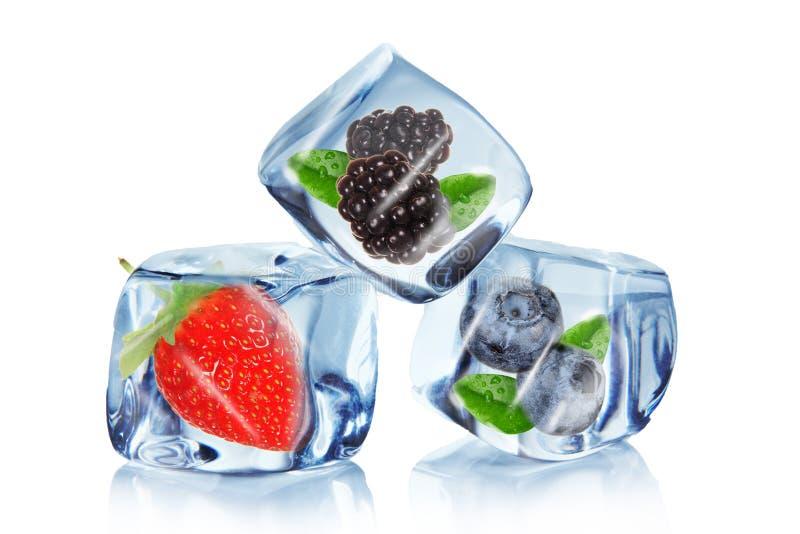 Fruta en cubos de hielo imagen de archivo libre de regalías