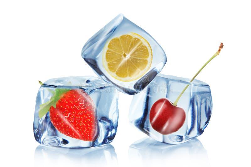 Fruta en cubos de hielo foto de archivo