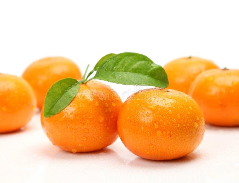 Fruta fresca foto de stock royalty free