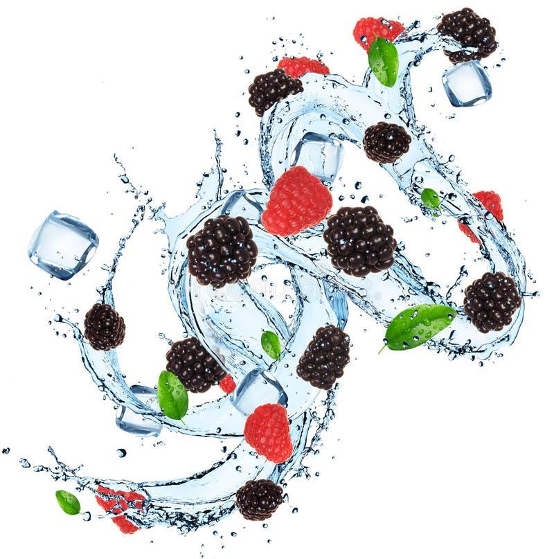 Fruta fresca con los cubos del chapoteo y de hielo del agua fotografía de archivo