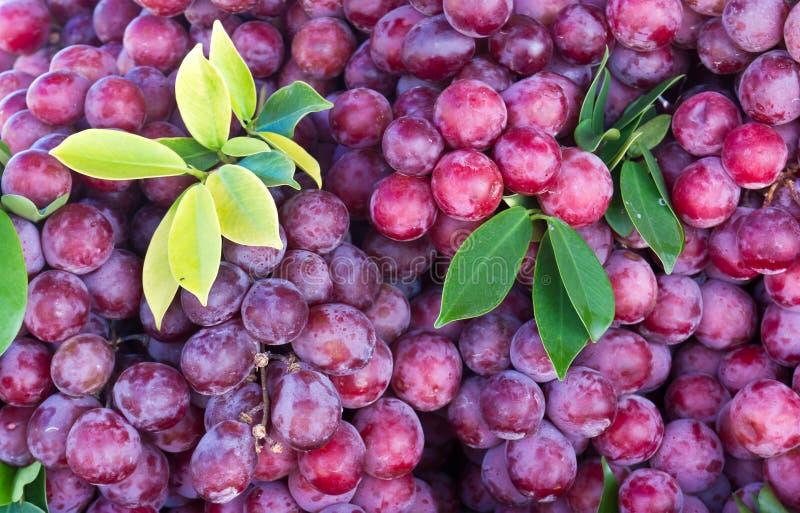 Fruta fresca da uva fotografia de stock royalty free