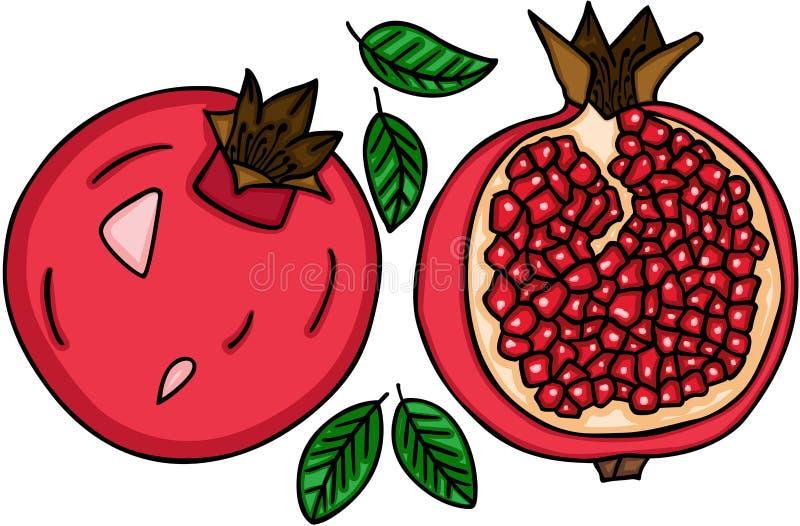 Fruta fresca de la granada ilustración del vector