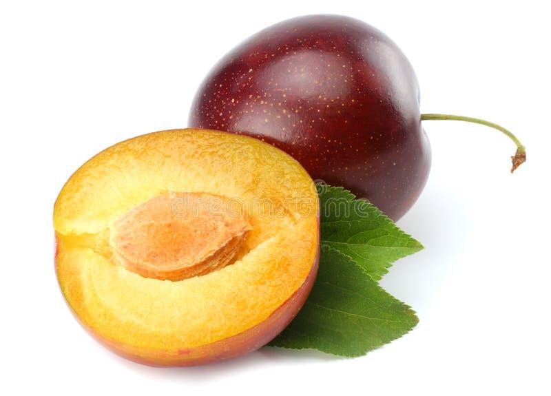 fruta fresca del ciruelo con las rebanadas cortadas del ciruelo aisladas en el fondo blanco fotografía de archivo