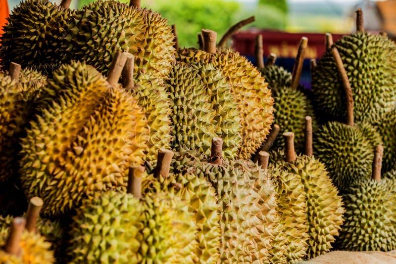 Fruta fresca del durian del jard?n del durian en venta en la fruta tropical de Tailandia del mercado local imagen de archivo libre de regalías