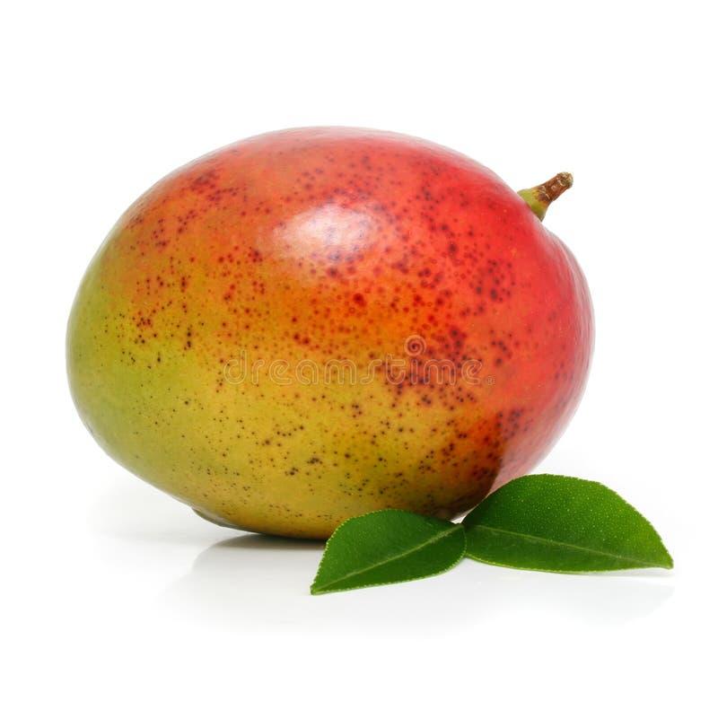Fruta fresca del mango con las hojas verdes aisladas fotografía de archivo
