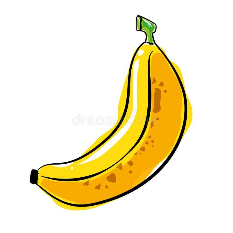 Fruta fresca y sana del plátano ilustración del vector