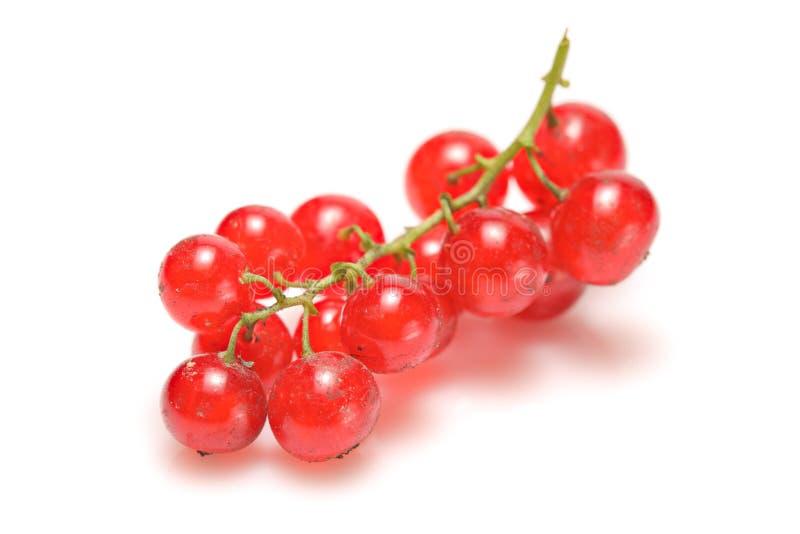 Fruta macia fotos de stock royalty free