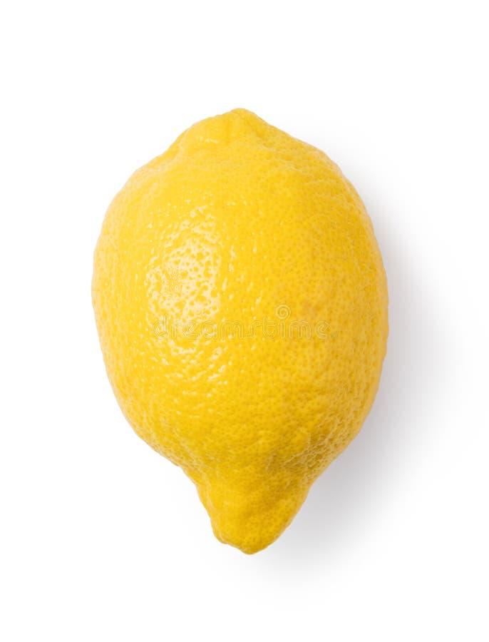 Fruta madura del limón imagen de archivo libre de regalías
