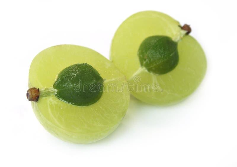 Fruta medicinal cortada do amla imagem de stock