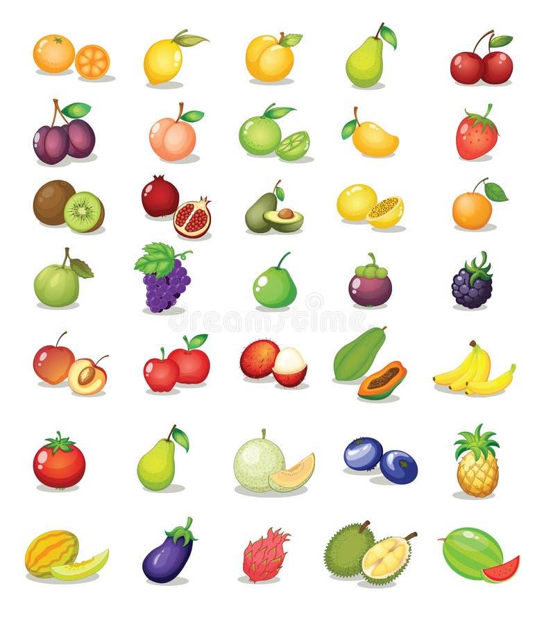 Fruta mezclada ilustración del vector