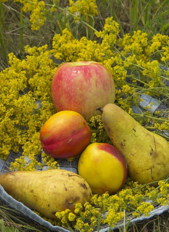 Fruta org?nica en hierba del verano Nectarinas, peras y Apple frescos en naturaleza imagen de archivo libre de regalías