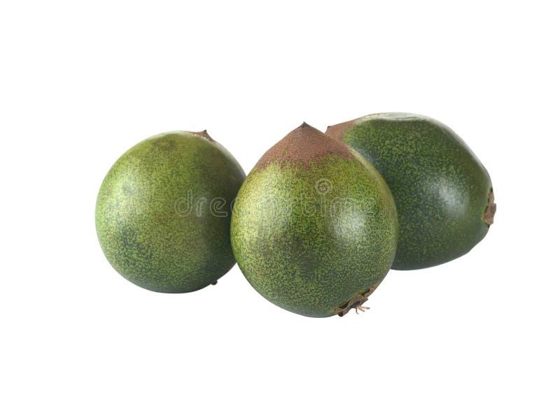 A fruta peruana chamou Lucuma imagens de stock royalty free
